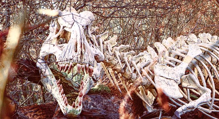 wildgarten_sept17