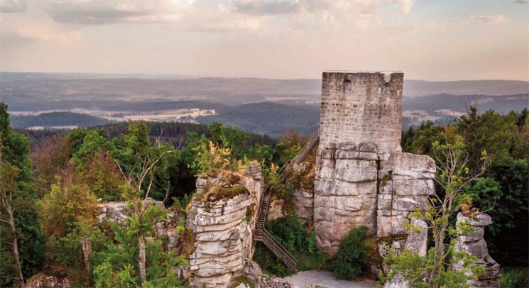 steinwald