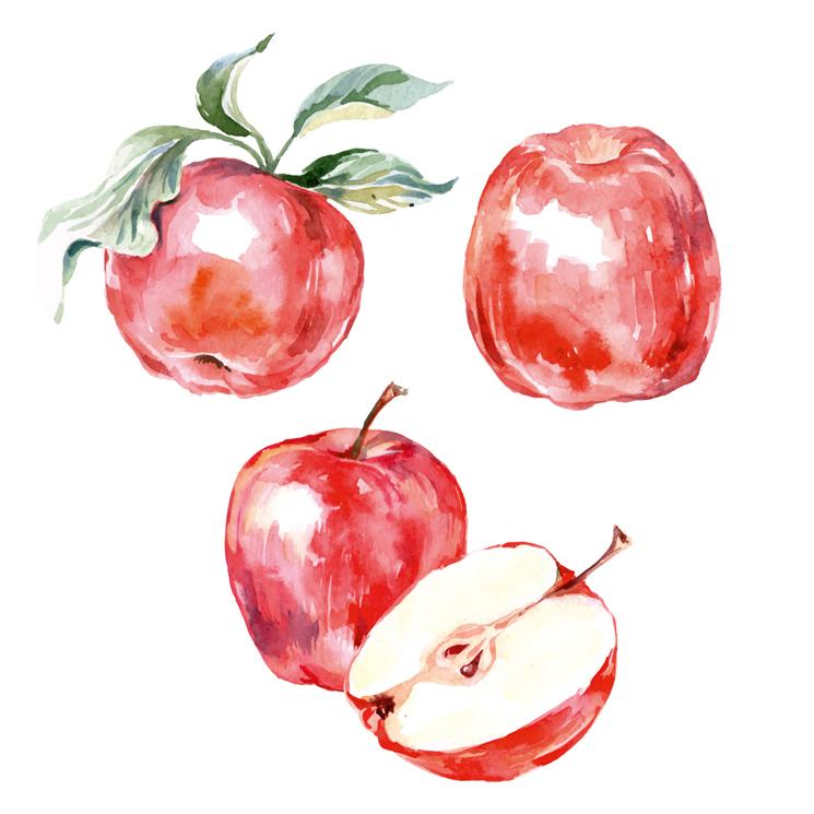 Ballaststoffe Apfel